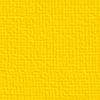 Plane Gelb